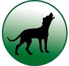 Hundeschule Stubenwölfe